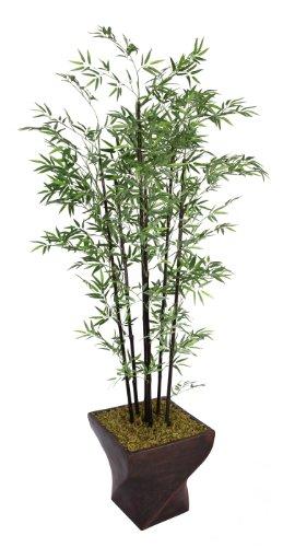 Silk Tabletop Tree Bamboo - Laura Ashley 82 Inch Tall Black Bamboo Tree in 17 Inch Fiberstone Planter