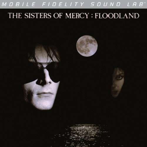 Top 9 best sisters of mercy vinyl floodland: Which is the best one in 2020?
