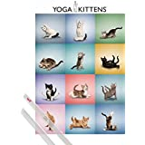 Poster + Hanger: Cats Poster (36x24 inches) Yoga Kittens And 1 Set Of Transparent 1art1® Poster Hangers
