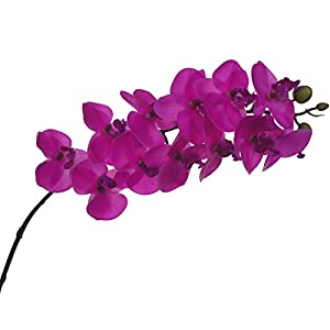 Lily Garden Mini Real Touch Latex Artificial Phalaenopsis Orchids Flower 75