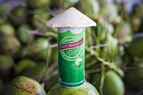 Taste Nirvana Real Coconut Water, Premium Coconut Water, 16.2 Ounce Cans (Pack of 12) by Taste Nirvana (Image #5)