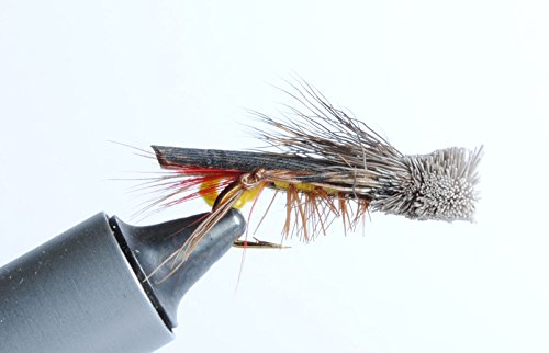 (Blue Wing Olive Dave's Hopper Dry Fly, 6-Pack (#12))