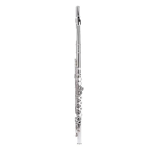 22 opinioni per Andoer Concerto Occidentale Flauto d'argento Placcato 16 Fori C Key Cupronickel