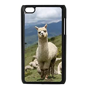 Customized Cell Phone Case for Ipod Touch 4 with Alpaca shsu_1966361 at SHSHU