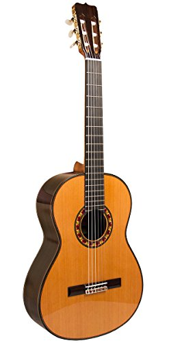 Guitarra del Tiempo, Studio Commemorative Cedar Top