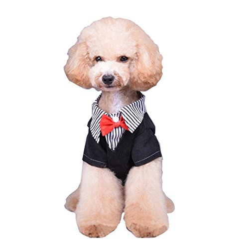 S-Lifeeling Gentleman Comfortable Design Dog Clothes Fashion Striped Spring Summer Teddy Pet Costumes Bowknot Pet (Striped Clown Overalls Costume)