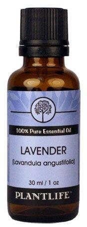 Lavender 100% Pure Essential Oil - 30 ml