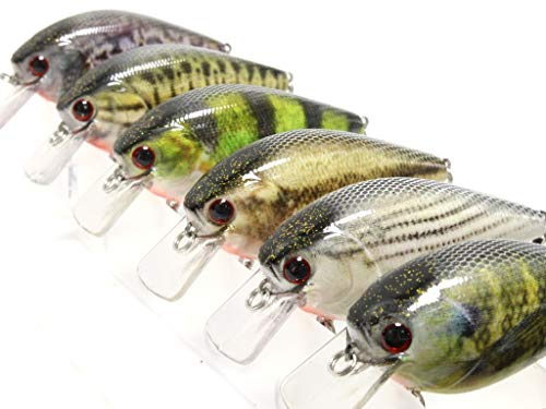 6 Hard Baits Fishing Lures in One Tackle Box Crankbait RealSkin Painting for Bass Fishing HC25KB