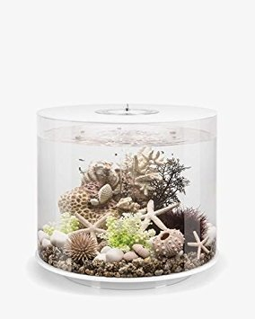 biOrb Tube 35 Aquarium with MCR - 9.2 Gallon, White by biOrb