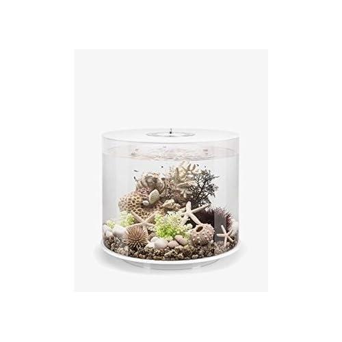 Image of biOrb Tube 35 Aquarium with MCR - 9.2 Gallon, White Pet Supplies