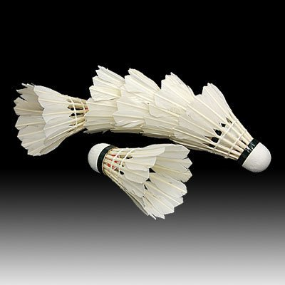 White Feather Shuttlecocks Badminton