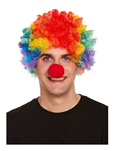 MA ONLINE Mens Funky Rainbow Afro Clown Wig