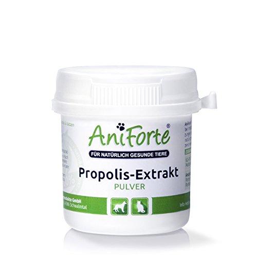AniForte Propolis-Extrakt Pulver 20 g - Naturprodukt für Hunde und Katzen