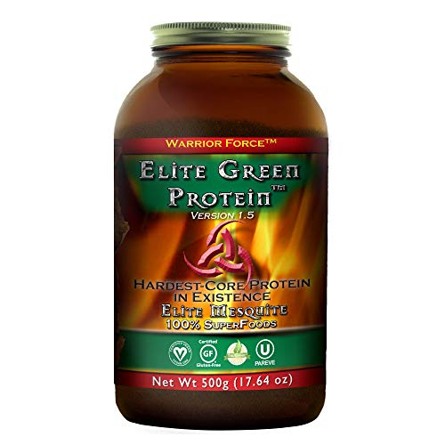 HealthForce SuperFoods Elite Green Protein Elite Mesquite - 500 Grams - Plant Based Protein Powder, Superfood Protein Supplement, Promotes Performance & Endurance - Vegan, Gluten Free - 20 Servings