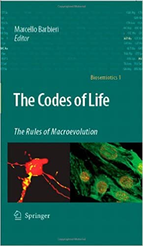The Rules of Macroevolution
