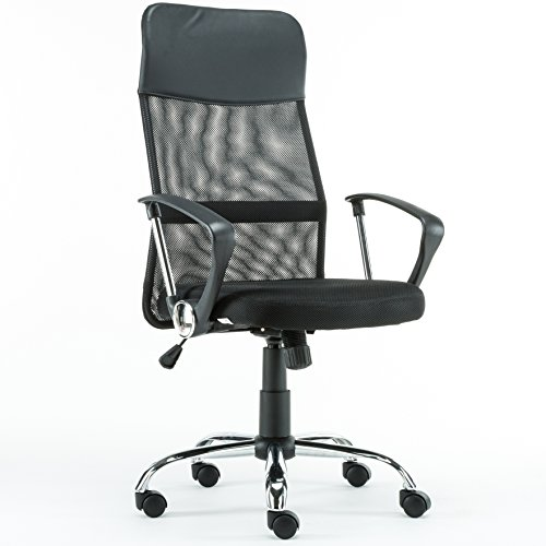 Anji High Back Ergonomic Mesh Computer Office Desk Chair with Lumbar Support by Anji Modern Furniture