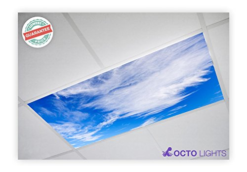 Cloud 003 2x4 Flexible Fluorescent Light Cover Cloud Fixture