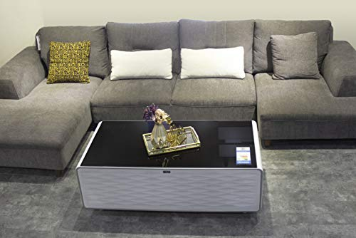 Smartest Tech Stuff PRIMST Refrigerator Coffee Table ...