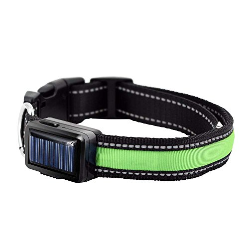 Solar Carabiner - EForces LED Dog Pet Collar, Solar/USB Rechargeable Waterproof Night Safety Flashing LED Light - Green/Red/ Blue/Yellow (L, Green)