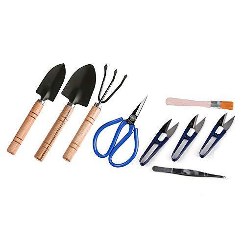 Amazon.com: ZELARMAN Bonsai Kit de herramientas de jardín ...