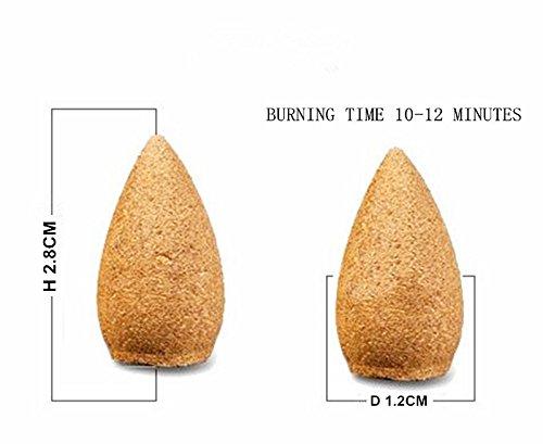 Startdy Backflow Natural Smoke Pagoda Indoor Tibetan Incense Cone Bullet Aromatherapy for yoga meditation 45pc/box DZX