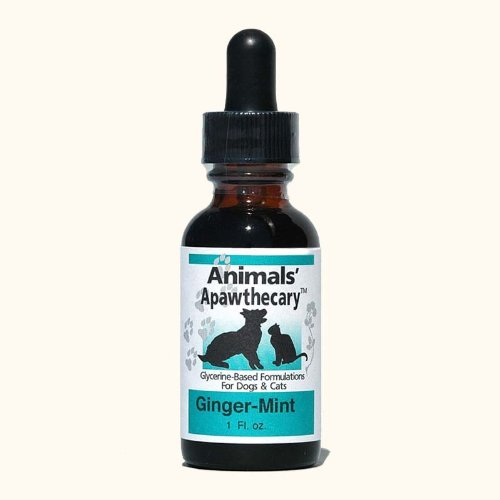 Animal Essentials Daily Digestion 1 fl oz by Animal Essentials