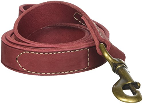 Coastal Pet Products Circle T Rustic Leather Dog Leash, 1