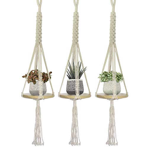 23 Bees | Macrame Hanging Planter Shelf | Indoor Plant Holder | 3 Sets Mini Round Floating Circular Shelves | Handcrafted Wood with Rope and Hanger (Best Type Of Wood For Shelves)