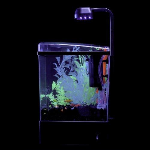 Tetra 29236 glofish aquarium kit 1 5 gallon misc in for Tetra pond filter setup