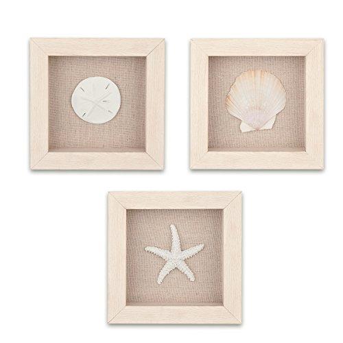 Home-Man Shadow Box Art Wall Decor, 3 Sealife Shadow Boxes Wall Art - Starfish, Seashell, Sand Dollar, Marine Organism Decorative Shadow Box Frame, Set of 3 by Home-Man