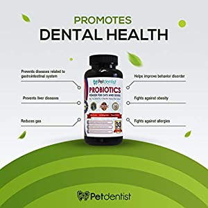 Petdentist Probiotics for Dogs and Cats, 17 Optimal Bacterial Strains, 73 Billion CFU's. Supplements for Dogs Bad Breath and Dental Health Support, Dog Digestion, Diarrhoea and Skin Coat Immunity-90g