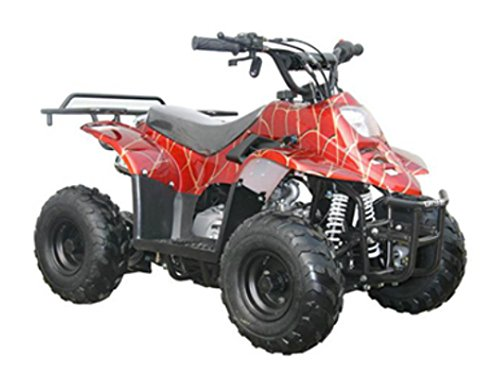 DONGFANG 110cc ATV Fully Automatic Four Wheelers 4 Stroke Engine 6' Tires Quads for Kids Red Spider