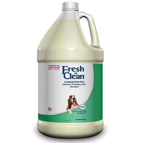 Oatmeal N' Baking Soda Shampoo Professional Dog and Cat Concentrate Gallon 10:1 (Oatmeal Kay Lambert)