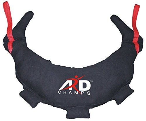ARD-Champs Bulgarian Bag Canvas Fitness, Crossfit, Wrestling, Judo, MMA, Sandbag (18KG/39LBS) by ARD-Champs