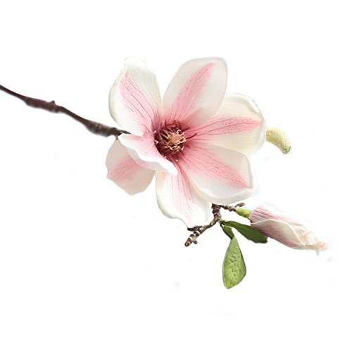 Single Branch Magnolia Artificial Flower Fake Flower Artificial Fake Flower Leaf Magnolia Flower Wedding Bouquet Home Decoration (Painting ()