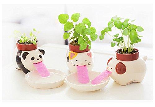 office flower pots. Office Flower Pots, Ceramic Creature Mini Drinking Animal Tongue Plant Vase Self Watering Critters Pots C