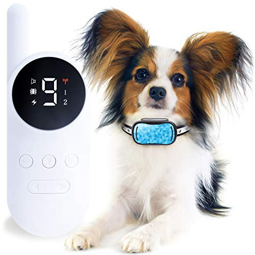 GoodBoy Small Size Remote Collar for Dogs with Beep Vibration and Shock Modes for Pet Behavior Training - Waterproof & 1000 Feet Range - Suitable for Small, Medium or Large Dogs Over 8 Lbs