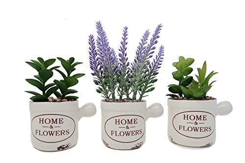 (L2b Lifelike Artificial Mini Fake Plants in Vintage Ceramic Pots, Succulents and Lavender, Home and Office Décor - Set of 3)