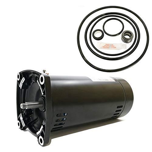 Puri Tech Sta-Rite Dyna-Glas 1HP MPRA6E147L Replacement Motor Kit AO Smith USQ1102 w/GO-KIT-47