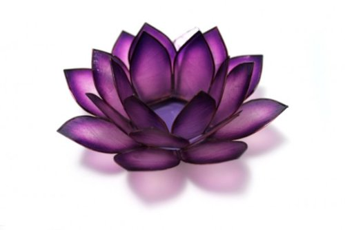Om Gallery Capiz Shell Lotus Tea Light Holder, Passion