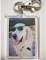 Llavero, diseño de perro Golden Retriever llavero: Amazon.es ...
