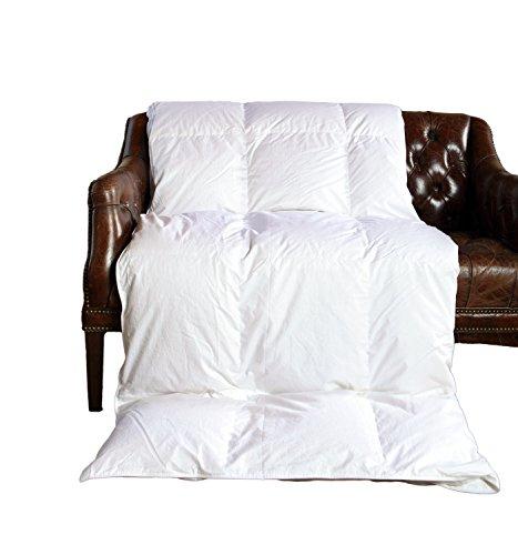 Amazon Com Cloud Nine Comforts Contessa Comforter King