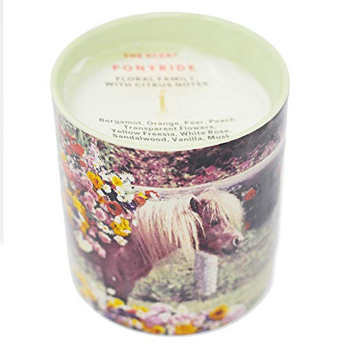 (Ponyride perfumed candle - Maurizio Cattelan for Toilet Paper)