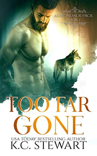 Too Far Gone (Adirondack Pack) (Volume 1)