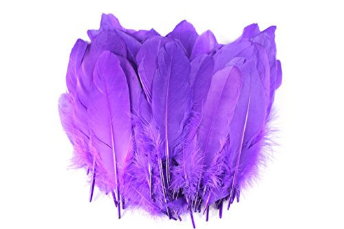100PCS Dyed Goose Feather For Art, Home or Party 6-8inch , Purple (Purple Feathers)