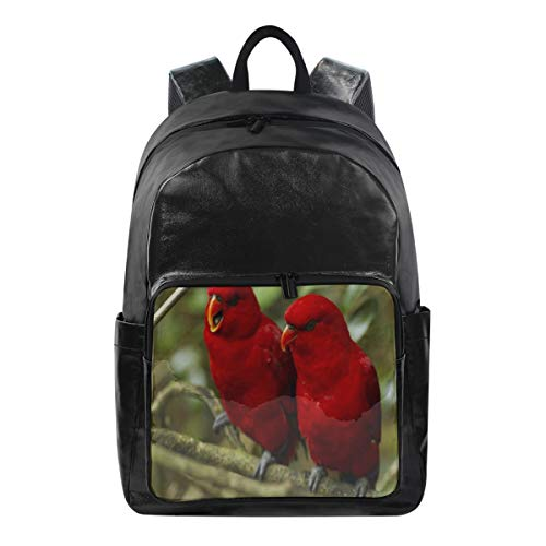 (Two Red Bird School Backpack 1th 2th 3th Grade for Boys Teen Girls Kids)