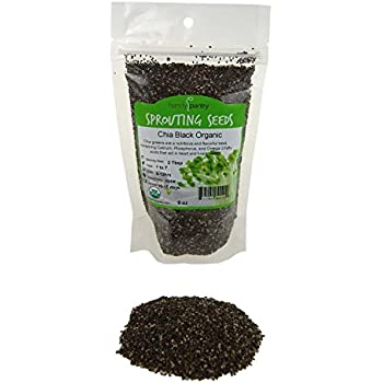 Amazon.com: Germ Line Fenugreek seeds – Handy Pantry marca ...