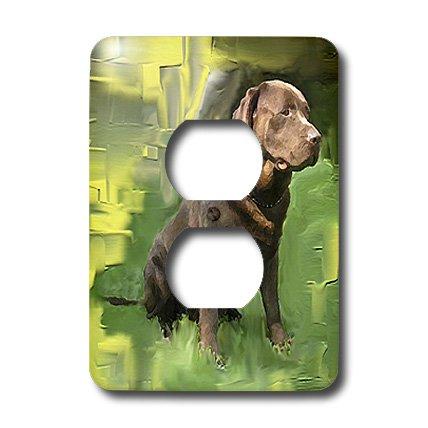 (3dRose lsp_3987_6 Chocolate Labrador Retriever 2 Plug Outlet Cover)