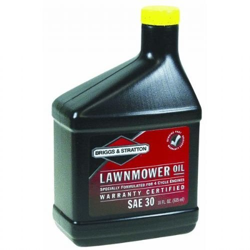 Briggs & Stratton 4-Cycle Motor Oil