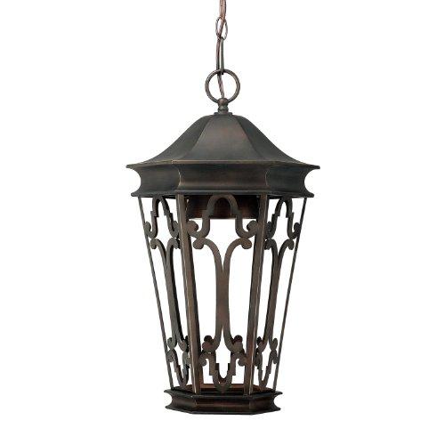 Dark Bronze Outdoor Hanging (Capital Lighting 9446OB One Light Outdoor Hanging Lantern/Dark Sky)